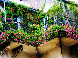 Even A Smallest Balcony Can Be Turned Into Magnificent Garden Full Of Colorful Flowers That Will Make Your Stand Out Just Look At These Examples
