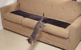 Cat training Sofa Scram Cat Mat Furniture Protection Alarm