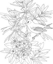 Click To See Printable Version Of Washington Willow Goldfinch And Rhododendron Coloring Page