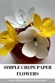 Before I Go Ahead With The Tutorial Would Like To Share What Got Me Into Making These Easy Crepe Paper Flowers At Home