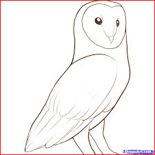 Owl Drawings 137700 How To Draw An Easy Drawing Pencil