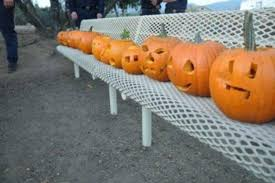 Bonita Pumpkin Patch Sweetwater Road by Photos Halloween Events At San Diego Parks 2017 10news Com News