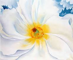 190 best Georgia O Keeffe Florals images on Pinterest