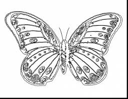Unbelievable Beautiful Butterfly Coloring Pages With Free And Online