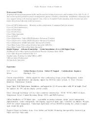 Resume Summary Examples For Freshers Profile On A Example