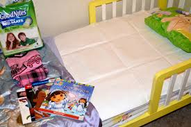 Goodnites Disposable Bed Mats by Potty Training Archives Insanity Is Not An Option