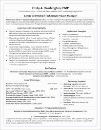 Project Manager Resume Summary Examples 8642925500033 Project