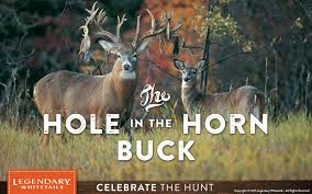 When Do Deer Shed Their Antlers Ontario by Hole In The Horn Buck Legendary Whitetails