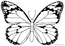 Free Butterfly Coloring Pages Color Page
