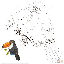 Книжкараскраска птицы Toucan для вектора взрослых Иллюстрация