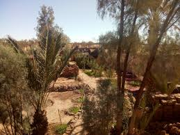 100 L Oasis AUBERGE OASIS MHAMID Prices BB Reviews Morocco