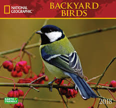 2018 National Geographic Backyard Birds Wall Calendar - National ... Marketplace Audubon Mason Bees Backyard Bird Shop Sibleys Birds Of The Midatlantic Southcentral States Amazoncom In Garden Wall Calendar 2018 Home Page The House Ny 97 Best Michaels Craft Store Coupons Discounts Images On Wild Fersbirdseed Blendsnature 25 Unique Birds Unlimited Ideas Pinterest Stained Glass Patterns 01557013429 Predator Guide Protect Your Yard Little Book Songs Andrea Pnington Caz
