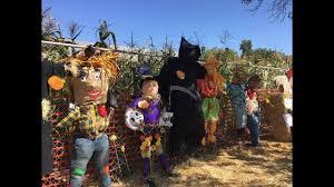 Pumpkin Patch Carlsbad Mall by Bates Nut Farm San Diego Urban Sketchers 2017 Youtube