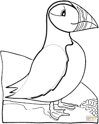 Click The Bird Puffin Coloring Pages To View Printable Version Or Color It Online Compatible With IPad And Android Tablets