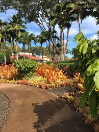 World s st Garden Maze and Pearl Harbor – Recoup and Conquer