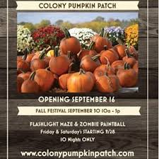 Where Did Pumpkin Patch Originate by Colony Pumpkin Patch North Liberty Ia