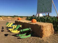 Silveyville Pumpkin Patch Dixon Ca by Giant Pumpkin Cool Patch Pumpkins 2015 Dixon Ca Cool Patch