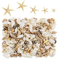 Yexpress 186 Pcs Mini Tiny Sea Shells Mixed Ocean Beach Seashells Natural Starfish For Home Decorations Beach Theme Party Candle Making Wedding