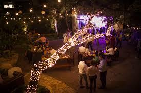 100 Seedling Truck Allan House Shanti Rob Outdoor Courtyard Twinkle