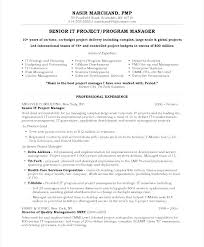 Resume Samples For It Youth Program Director Sample Project Manager Free Blue Sky Resumes
