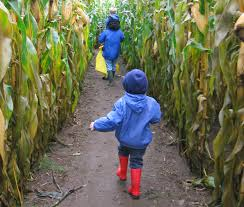 Great Pumpkin Patch Frederick Md by Corn Mazes From Coast To Coast Sever U0027s Maze And More