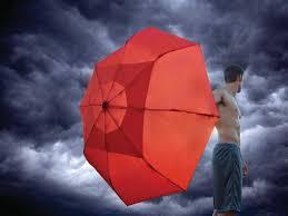 Shed Rain Umbrella Amazon by Best Umbrellas Business Insider