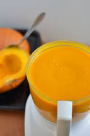 Freeze Pumpkin Puree From Can by How To Homemade Pumpkin Puree