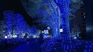 Holiday Decorators Warehouse Plano by Frisco Christmas Lights Installation
