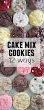 Cake Mix And Pumpkin Cookies by Best 25 Cake Box Cookies Ideas On Pinterest Chocolate Cake Mix