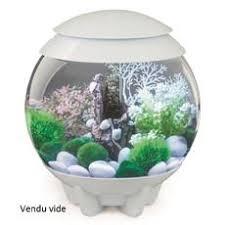 les 25 meilleures idées de la catégorie aquarium biorb sur