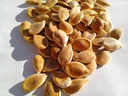 Organic Pumpkin Seeds Online by Free Picture Pumpkin Seeds Natural Organic Seed Plant