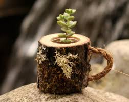 Coworker Gift Succulent Pots Rustic Coffee Mug Plant Holder Boss Log Planter Desk