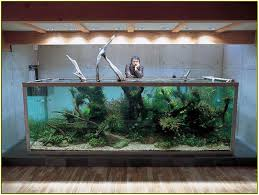 Unique Fish Tank | Home Design Ideas 60 Gallon Marine Fish Tank Aquarium Design Aquariums And Lovable Cool Tanks For Bedrooms And Also Unique Ideas Your In Home 1000 Rousing Decoration Channel Designsfor Charm Designs Edepremcom As Wells Uncategories Homes Kitchen Island Tanks Designs In Homes Design Feng Shui Living Room Peenmediacom Ushaped Divider Ocean State Aquatics 40 2017 Creative Interior Wastafel