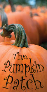Pumpkin Patches Mankato Mn by Things To Do With Families And Kids Fun 4 Kids