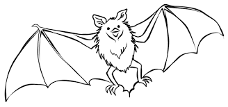 Full Size Of Coloring Pagecoloring Pages Bats Bat Color Stockphotos Page Large