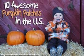 Pumpkin Patch Dixon Il by 10 Awesome Pumpkin Patches Across The U S