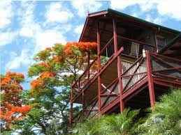 100 Treetops Maleny Tropical Retreat Resort Sunshine Coast Deals