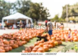 Free Pumpkin Patch In Katy Tx by Children Going To Church Stock Images Royalty Free Images