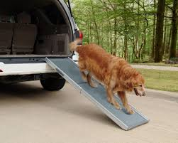 Solvit Pet Ramp Inexpensive Doggie Ramp With Pictures Best Dog Steps And Ramps Reviews Top Care Dogs Photos For Pickup Trucks Stairs Petgear Tri Fold Reflective Suv Petsafe Deluxe Telescoping Pet Youtube The Writers Fun On The Gosolvit And Side Door Dogramps Steps Junk Mail For Cars Beds Fniture Petco Lucky Alinum Folding Discount Gear Trifolding Portable 70 Walmartcom 5 More Black Widow Trifold Extrawide
