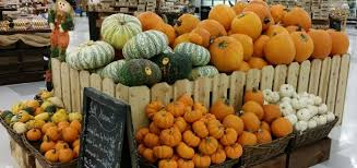 Varieties Of Pumpkins by Pumpkins And Winter Squash Varieties Countryside Network