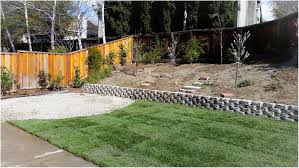 Backyards : Wonderful Cheap Backyard Ideas Dog Friendly Our ... Easy Backyard Landscape Design Ideas Triyae Various Outdoor Lawn And Garden Best No Grass Yard On Pinterest Dog Friendly Backyards Amazing 42 Landscaping Small Simple Inspiring Patio A Budget With Cozy Look For Dogs Sunset Prescott Your Appmon Front Compact English