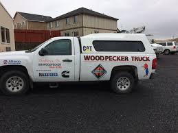 Creative Signs (@creativesigns23) | Twitter Eno Woodpecker For Web Mudflaps Ford Truck Enthusiasts Forums 2019 Intertional Hx Tandem Axle Day Cab Cummins Isx 565hp Pileated Woodpecker Or Giant Red Headed Jackhammer Soundi Flickr 2013 Paystar 5900 Chassis For Sale 66038 Black Chevy Mega Digging In At Woodpeckers Mud Bog End Of Year A Us Marine Corps Medium Tactical Vehicle Replacement 7ton Truck Freightliner Pickup Shortly After I Got Out Of The Woody Fire Kiddie Ride Version 2 Youtube Triple M Equipment Home Facebook Creambacked Campephilus Leucopogon Female In A