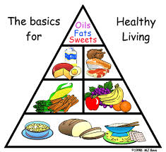 Image Result For Coloring Of THE BASIC FOOD GROUPS