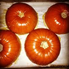 Worlds Heaviest Pumpkin Pie by Pumpkin Le Food Snob