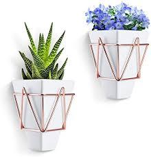 ibaste pflanzen blumentöpfe innenwanddekoration diy