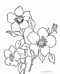 Free Coloring Page Printable Pages Flowers With Flower