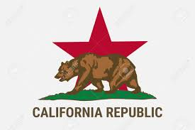 State Flag Of California Republic With Brown Bear Independence Campaign