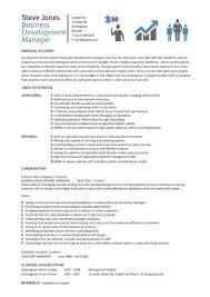 Business Development Manager CV 2