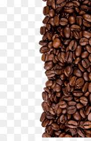 Coffee Bean PNG Transparent Clipart Free Download