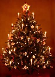 german christmas tree christmas lights things pinterest